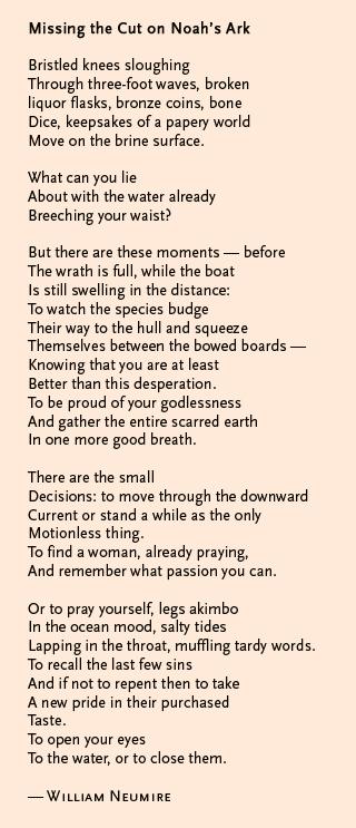 Noah's ark poem